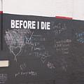 Before I Die by Diane Schuler