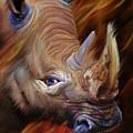 Before I Fade Away - White Rhino