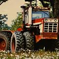 Before The Harvest by Lori Mellen-Pagliaro