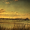 Behind Cherry Grove Pier  by Trish Tritz