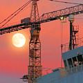 Behind The Crane A Hunter's Moon Rises II by De Ann Troen