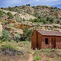 Behunin Cabin by Susan McMenamin