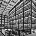 Beinecke Rare Book And Manuscript Library Bw by Susan Candelario