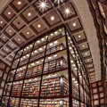 Beinecke Rare Book And Manuscript Library II by Susan Candelario