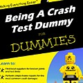 Being A Crash Test Dummy For Dummies by Mark Fuller