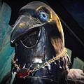 Bejeweled Bird by AJ Schibig