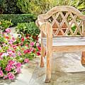Bel-air Bench by David Lloyd Glover