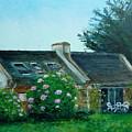 Bel-ile-en-mer by Lizzy Forrester
