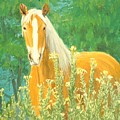 Belgian Draft Horse by Lee Thomason