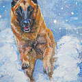 Belgian Malinois In Snow by Lee Ann Shepard