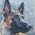 Belgian Malinois In Winter by Lee Ann Shepard