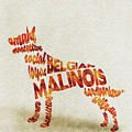 Belgian Malinois Watercolor Painting / Typographic Art by Inspirowl Design