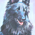 Belgian Sheepdog Portrait by Lee Ann Shepard