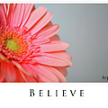 Believe by Traci Cottingham