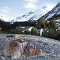 Bell Mountain by Leland D Howard