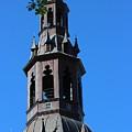 Bell Tower by Haniet Cordovi