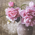 Belle Fleur Pink Peonies by Michele Slaughter