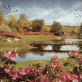 Bellingrath Gardens by Lianne Schneider