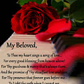 Beloved by Belinda Rose