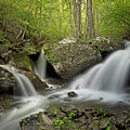 Below Apple Orchard Falls by Virginia Dickens