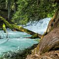 Below The Falls by Belinda Greb