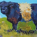 Belted Galloway Cow - The Blue Beltie by Mike Jory