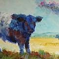 Belted Galloway Cows Painting - About To Rain by Mike Jory