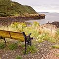 Bench At The Bay by Elena Perelman