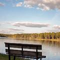 Bench By The Lake by Mechala Matthews