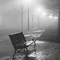 Bench In The Mist by Rianna Stackhouse