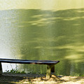 Bench On A Lake by Dan Radi