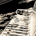 Bench Panorama In Sepia by Lenore Senior