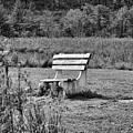 Bench Park Black White  by Chuck Kuhn