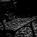 Bench by Tino Lehmann
