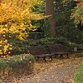 Benches In The Park by Eena Bo