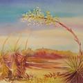Bending Yucca by Summer Celeste