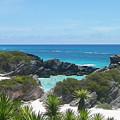 Bermuda Bliss by Gina Sullivan