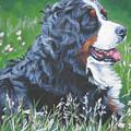 Bernese Mountain Dog In Wildflowers by Lee Ann Shepard