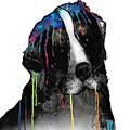Bernese Mountain Dog by Marlene Watson