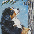 bernese Mountain Dog puppy and nuthatch by Lee Ann Shepard