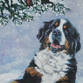 Bernese Mountain Dog With Cardinal by Lee Ann Shepard