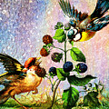 Berries And Birds by Tammera Malicki-Wong