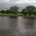 Berry Creek Panorama by John Johnson