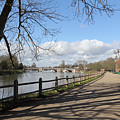 Beside The Thames At Hampton Court London Uk by Julia Gavin