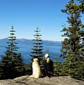Best Buddies At Lake Tahoe by Waterdancer