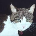 Best Cat by Karen Zuk Rosenblatt