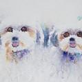 Best Friends  by Lisa Vincent