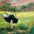 Best Legs In Ngoro by Sally Seago