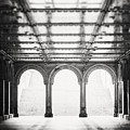 Bethesda Terrace In Black And White by Lisa Russo