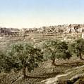 Bethlehem Field 1890 by Munir Alawi